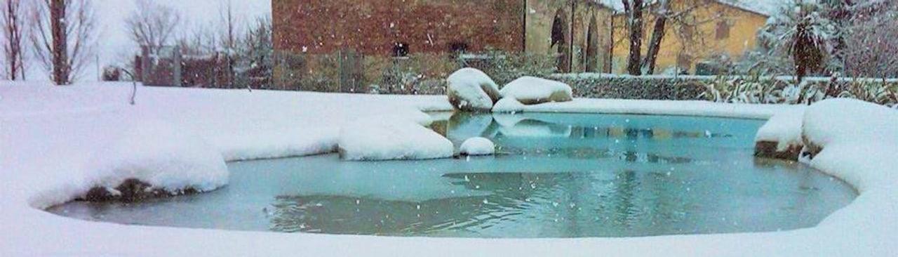 Ein Pool fürs ganze Jahr